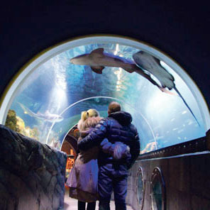 Sealife Konstanz