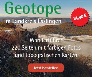 Geotope