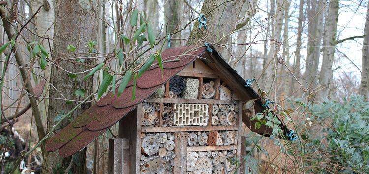 insektenhaus selber bauen weilheim und umgebung teckbote. Black Bedroom Furniture Sets. Home Design Ideas